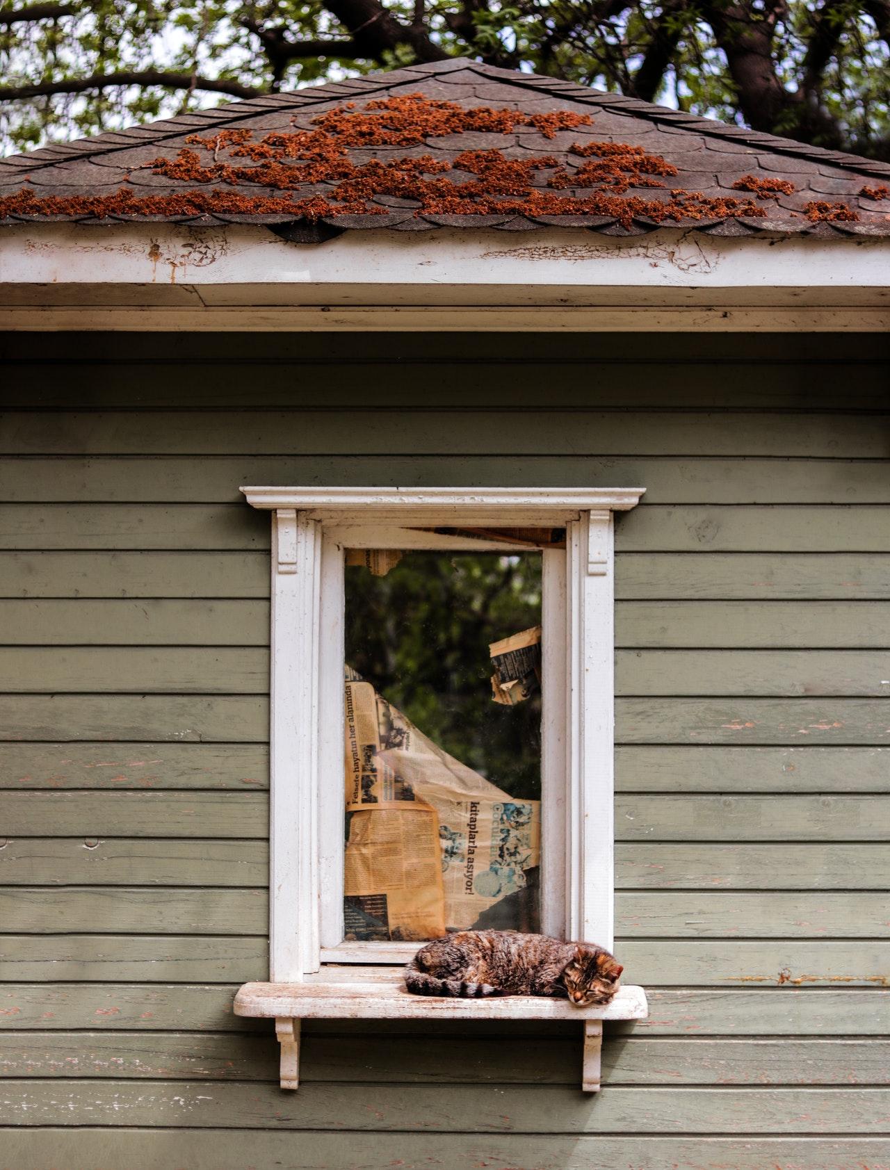 houten-schuur-isoleren
